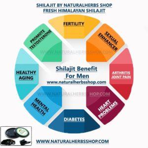 shilajit benefits for men
